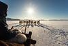 Inuit on dogsled
