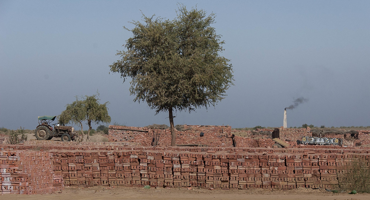 Manual labour brick factory, outskirts of Jaisalmer.