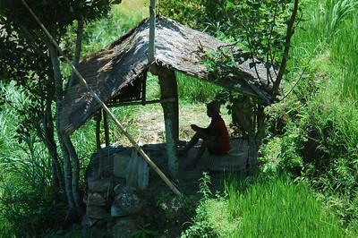 Farmer on break, Bali, Indonesia.