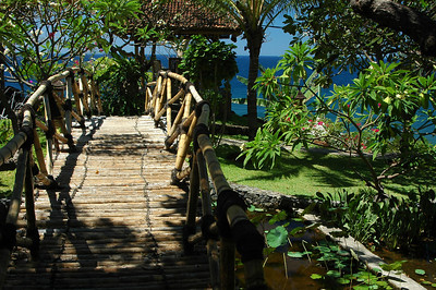 Garden, north shore of Bali, Indonesia.