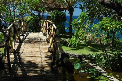 Garden, north shore of Bali, Indonesia.