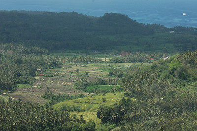 View over fields to the Bali Sea, Bali, Indonesia.