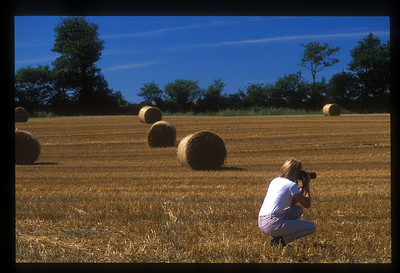 Hay bales, County Wexford, Ireland.