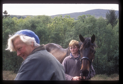 Trail rides available, rural Ireland.