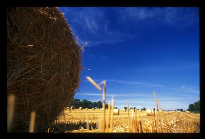 Hay bales, County Wexford, Ireland.