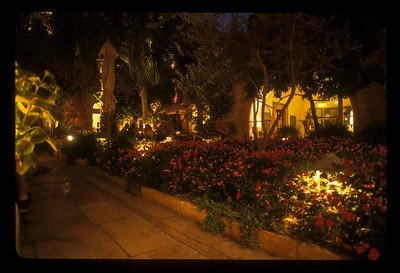 Gardens outside the American Colony hotel, East Jerusalem.