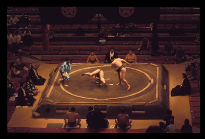 National sumo championships, Tokyo, Japan.