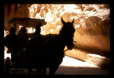 Transport along the road to the ancient ruins of Petra, Jordan.