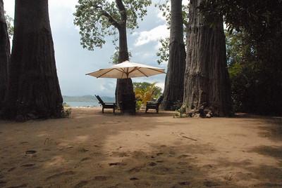 Under the baobabs, Likoma Island, Lake Malawi.