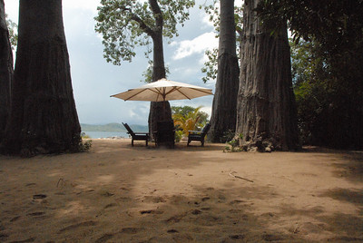 Under the baobabs, Likoma Island, Lake Malawi.