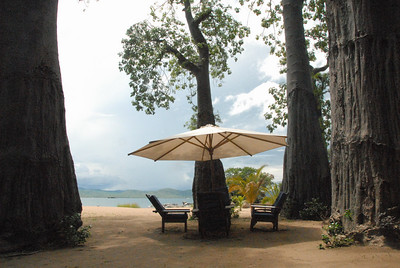 Under the baobab trees, Kaya Mawa resort, Likoma Island, Malawi.