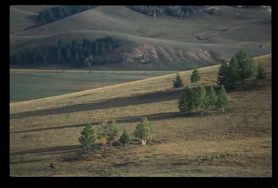 Landscape, Mongolia.