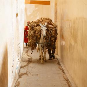 Medina transportation