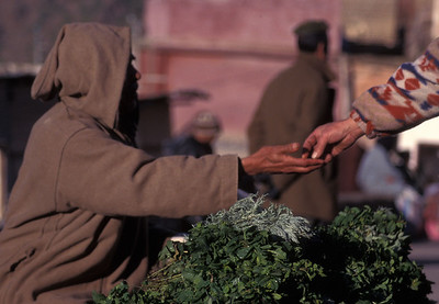 Herb trader, village in Atlas mountains, Morocco.