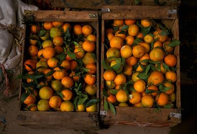 Fruit in Fez, Morocco market.
