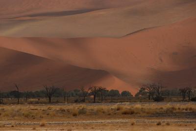 Landscape, Namib-Naukluft National Park, Namibia.