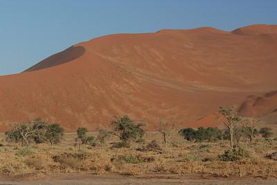Sand dune near Sossusvlei, Namibia.