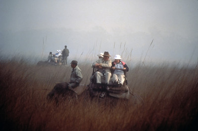 Elephant safari, Royal Chitwan National Park, Nepal.