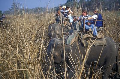 Elephant safari, Royal Chitwan National Park, Nepal.