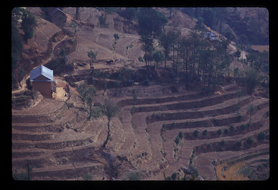 Terraces outside Nagarkot, Nepal.
