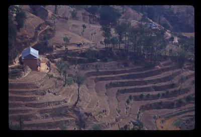 Terraces outside Nagarkot, Nepal.