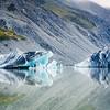 Mt. Cook Icebergs
