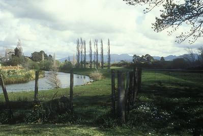 Rural New Zealand.