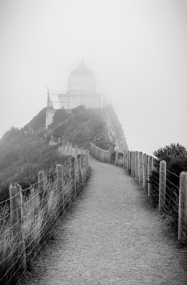 Nugget Point Mist