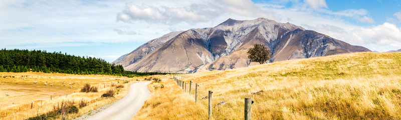 Farm Land in New Zealand