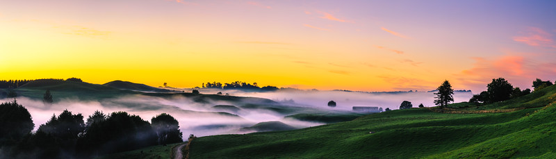 Rolling Fog Panorama