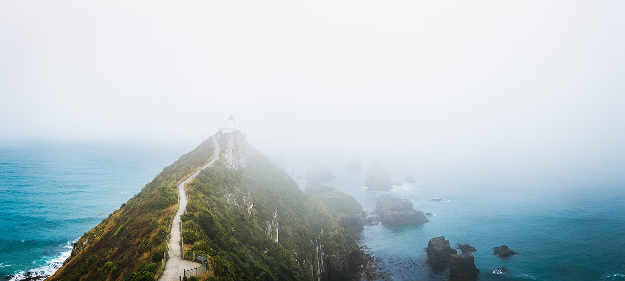 Misty Morning at Nugget Point