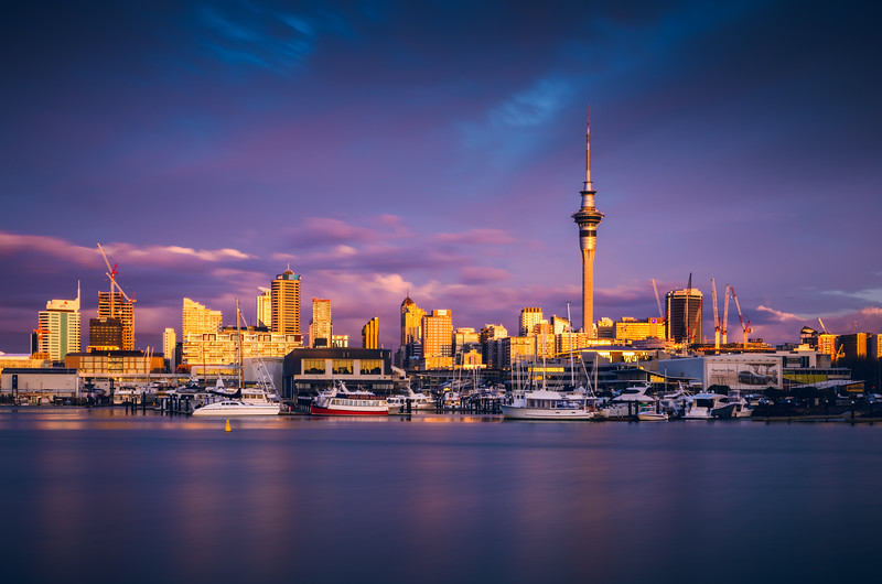 Auckland Skyline  Magenta Sunset