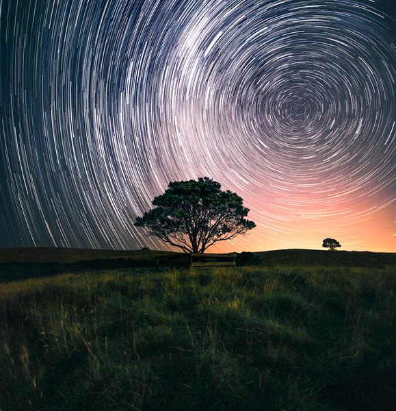 Lone Tree Star Trails