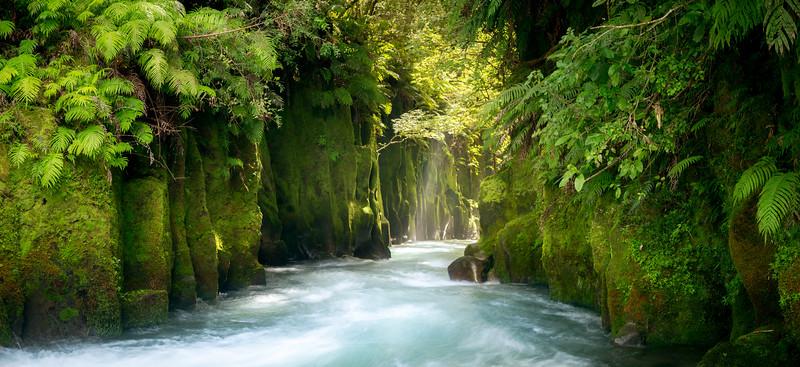 Te Whaiti Nui A Toi Canyon