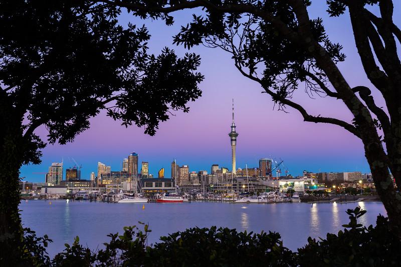 Auckland Skyline at Blue Hour
