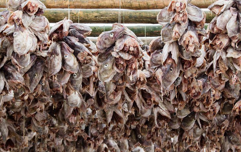 Drying cod