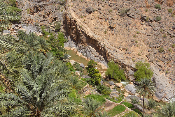 Wadi near Misfat Al Abreyeen mountain village, Oman.