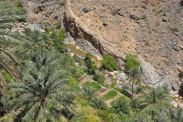Wadi, rural Oman.