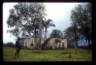 Ruin along Sepik River, Papua New Guinea.