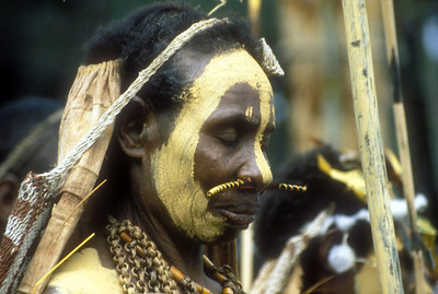 Participant in the annual Goroka Show tribal dance festival, Goroka, Papua New Guinea.
