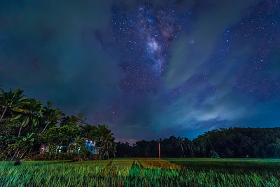 Bohol 13 - Milky Way above the Ricefields