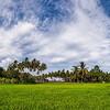 Siquijor 13-Landscape