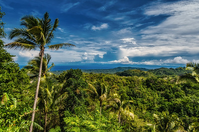 Siquijor 10-View from the Top