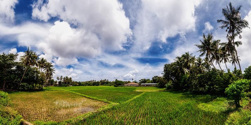 Siquijor 11-Landscape