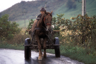 Farmer, horse and cart, rural Transylvania, Romania.