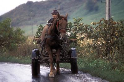 Farmer, horse and cart, rural Transylvania, Romania.