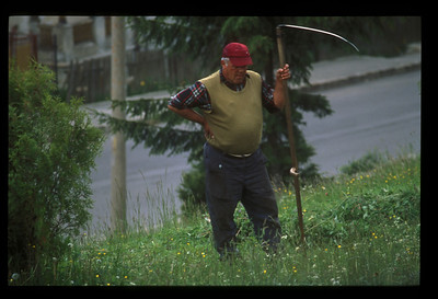 Cutting the grass on the road to Sinaia, Romania.