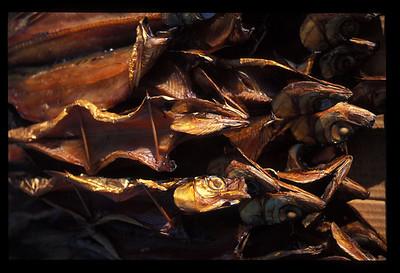 Dried fish at market near Lake Baikal.