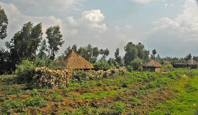 Subsistence farming at the base of Mt. Sabinyo, Virunga Mountains, Rwanda.