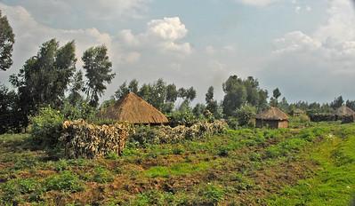 Subsistence farming at the base of Mt. Sabinyo, Virunga Mountains, Rwanda.